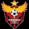 Teren de fotbal sintetic – Dangelo Sport